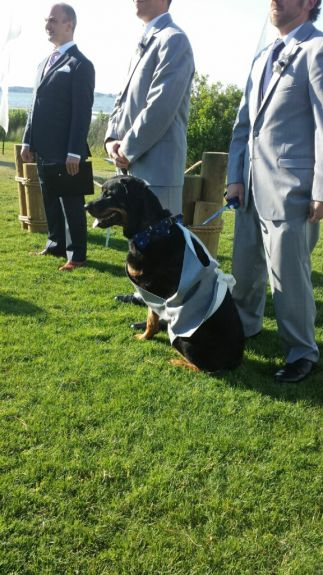 My handsome ring bearer waiting for me at the alter. <3